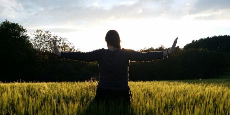 Fünf Elemente QiGong